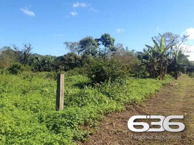 imagem-Chácara/Sítio-Jardim Paraíso-Joinville-01025603